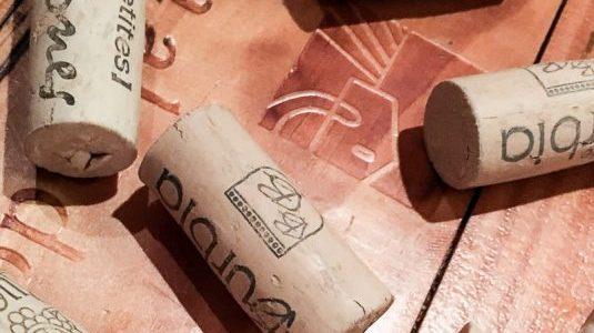 cat-La comunidad del vino