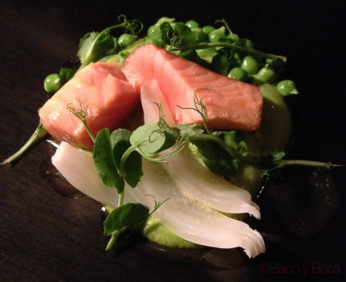 salmon guisantes del maresme e hinojo pla bacoyboca