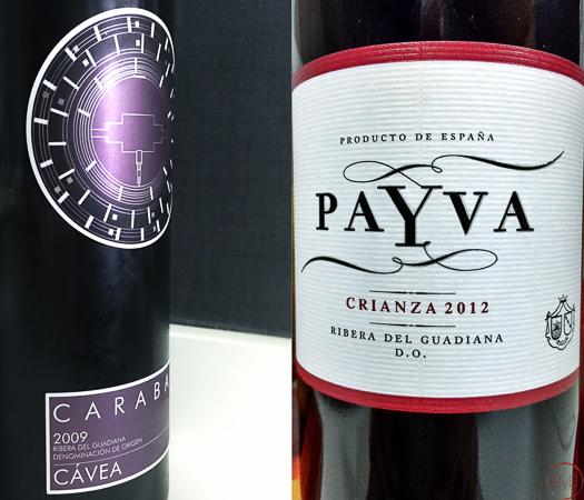 Cávea y Payva