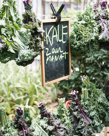 all-those-kale
