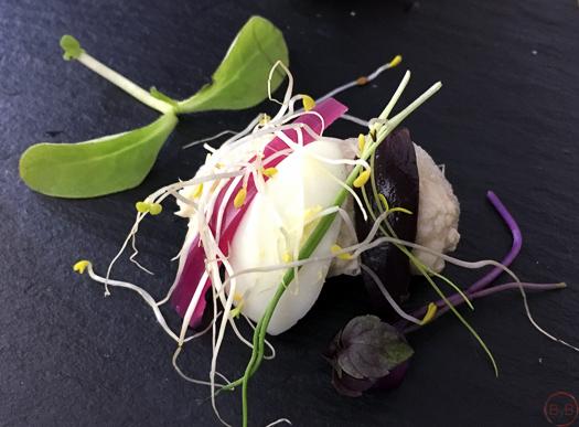 Nit de la Gastronomia de Vilanova