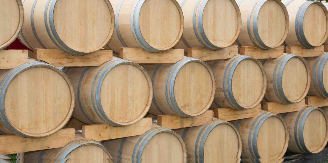 bodega vinos